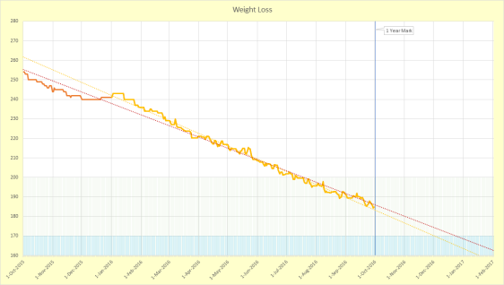 weight loss chart: 1 year